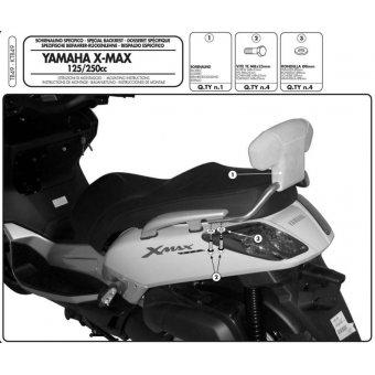 GIVI TB49 YAMAHA X-MAX 125-250 (05-09) SISSYBAR